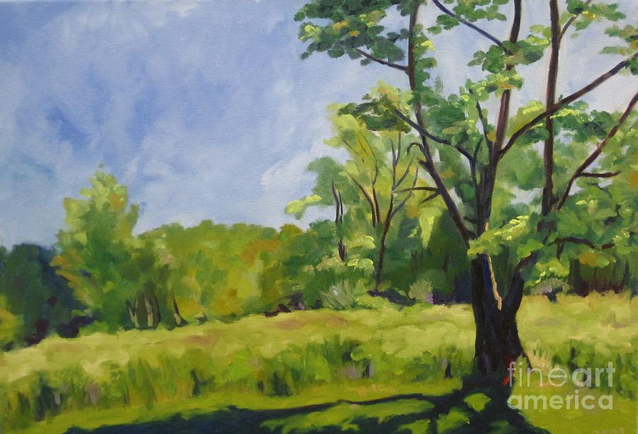 Possum Creek Park by Katrina West