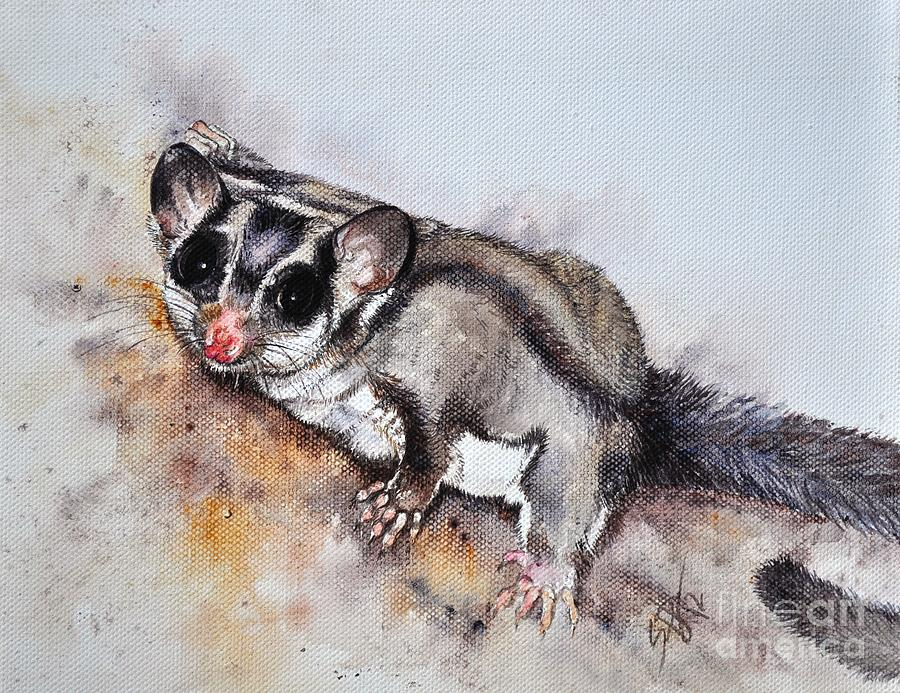 Possum Cute Sugar Glider Painting by Sandra Phryce-Jones