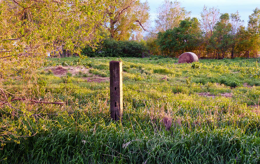 Spring Photograph - Post And Haybale by Tracy Salava