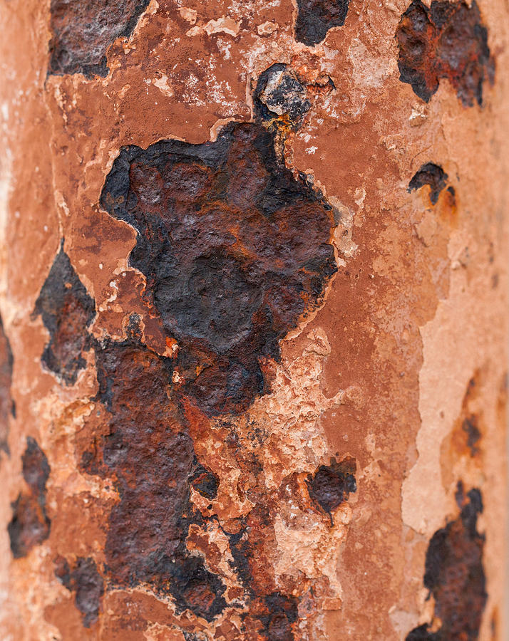 Rust Photograph - Post In Decay  by Fran Riley