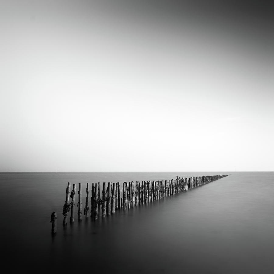 Posts In Sea Photograph by Anthony Skelton