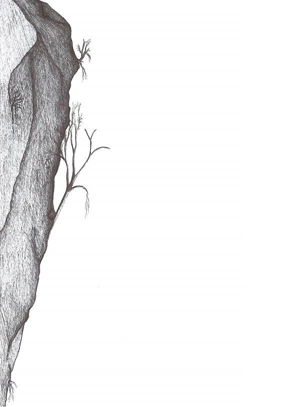Tree Drawing - Potentially Climbable by Giuseppe Epifani