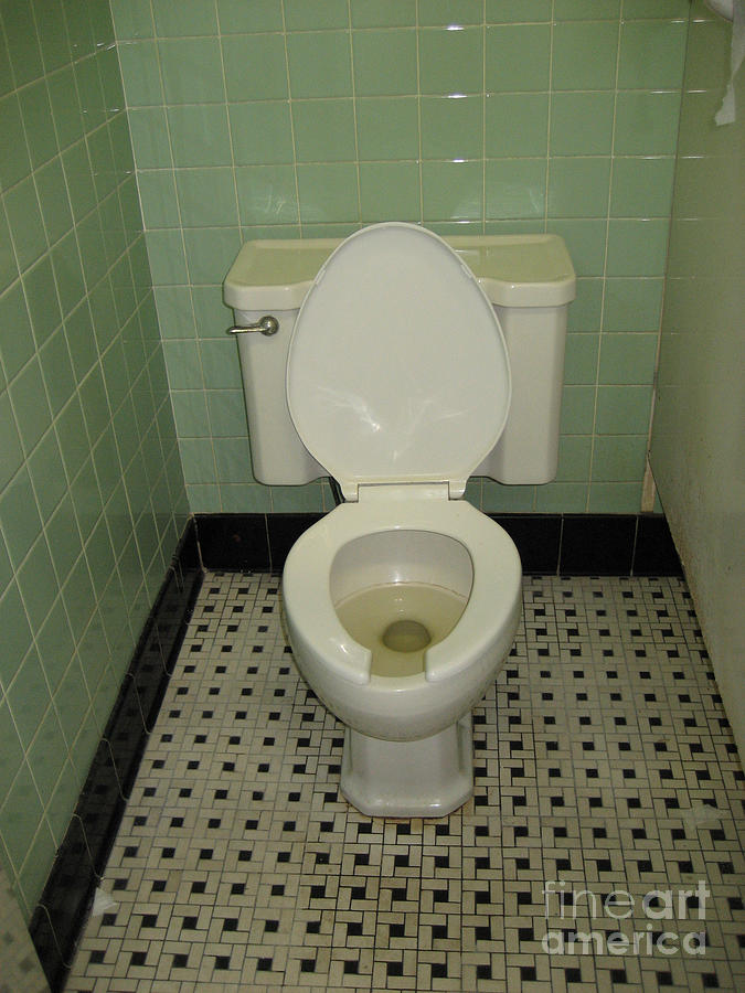 Toilet Photograph - Potty by Susan Sorrell