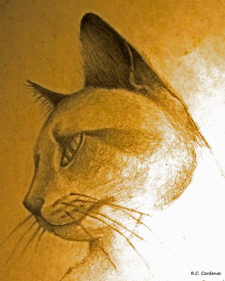 Cat Photograph - Pouncer by Rebecca Christine Cardenas