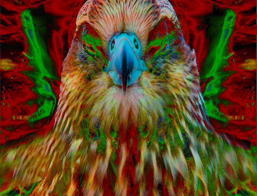 Abstract Digital Art - Power Hawk 1 by Colleen Cannon