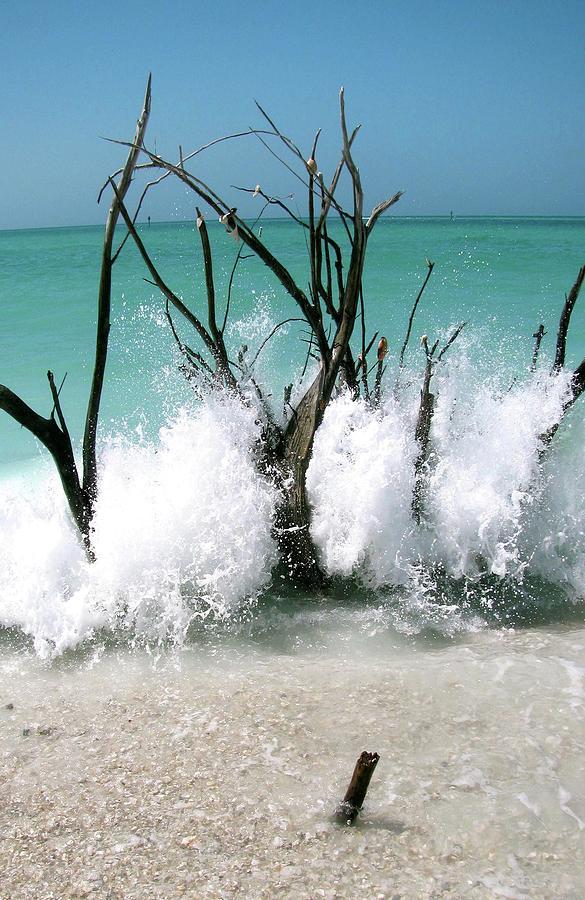 Beach Photograph - Power Wave  by AR Annahita
