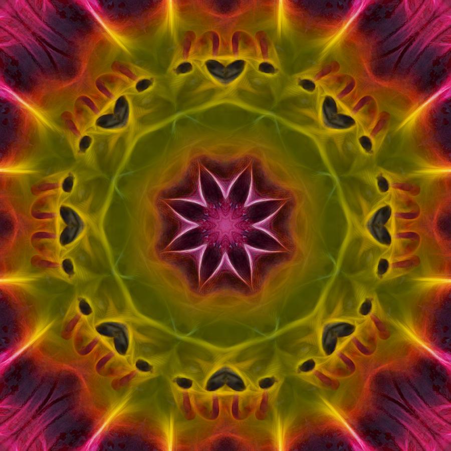 Mandala Photograph - Powerful Creator - Square by Beth Sawickie