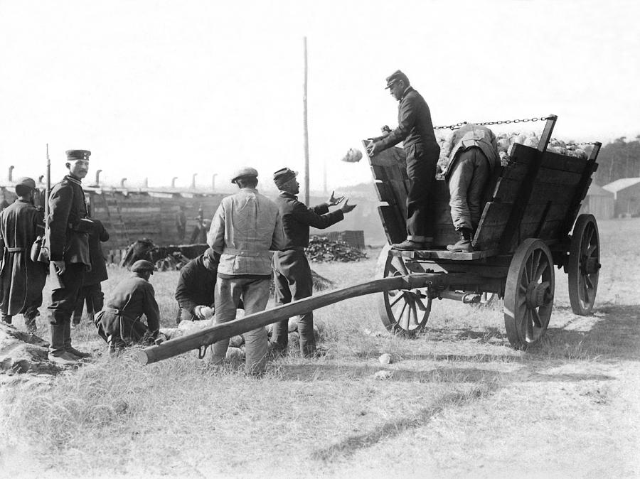 1910s Photograph - Pows Unload Cabbages For Lunch by Underwood Archives