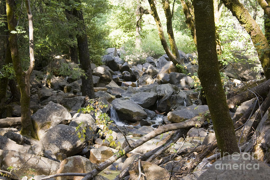 Landscape Photograph - pr 135 - A Very Dry Stream  by Chris Berry