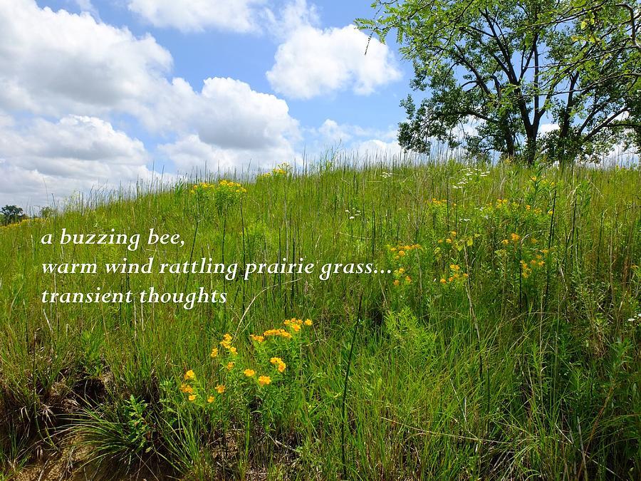 Landscapes Photograph - Prairie Hike by Scott Kingery