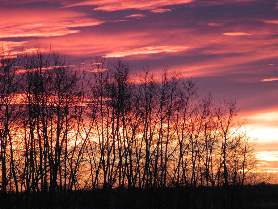Sunrise Photograph - Prairie Sunrise by Susan Copley