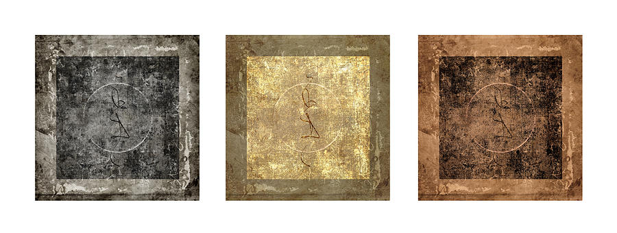 Prayer Photograph - Prayer Flag Triptych Series Two by Carol Leigh