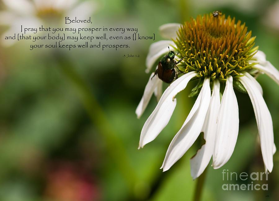 Inspirational Photograph - Praying For My Friend by Sandra Clark