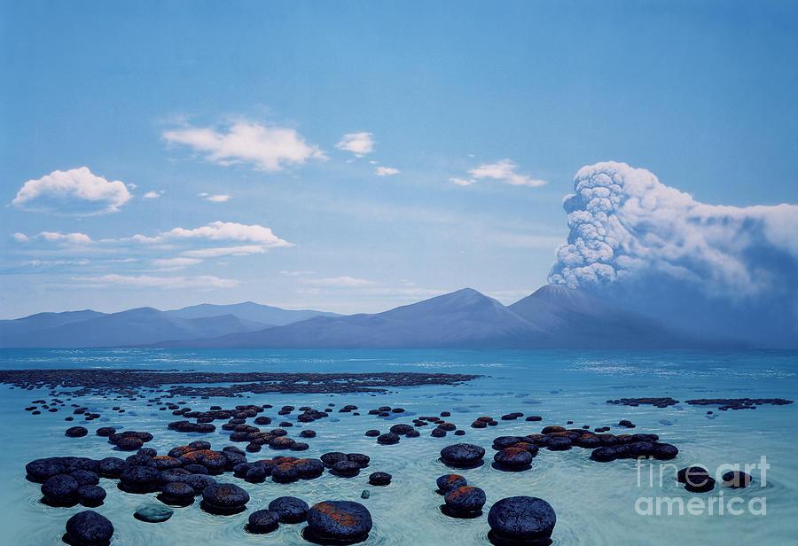 Illustration Photograph - Precambrian Stromatolites by Chase Studio
