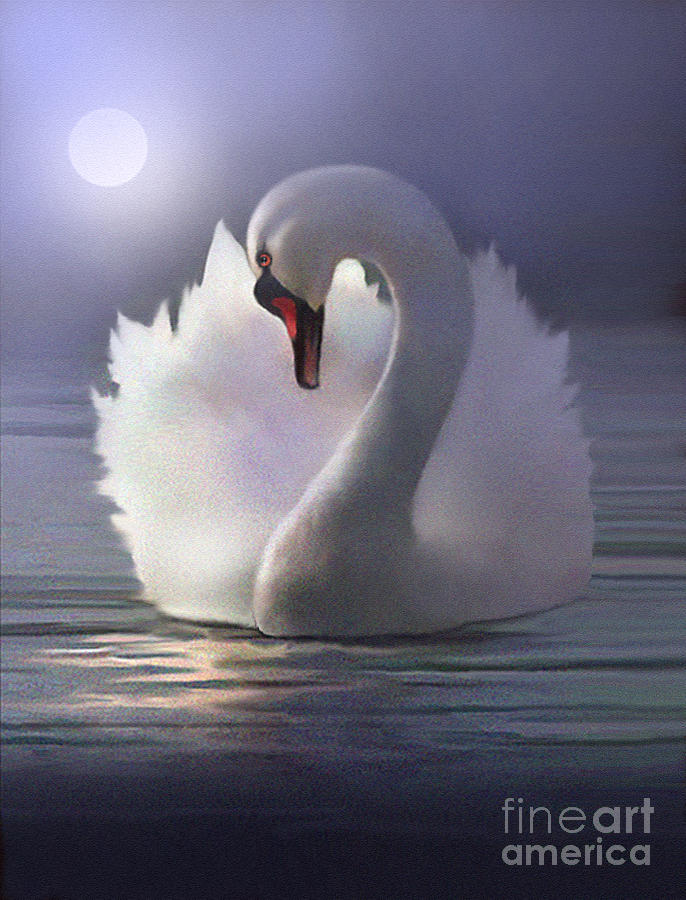 Swan Painting - Preen by Robert Foster