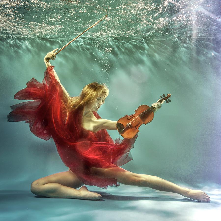 Underwater Photograph - Prelude by Uniquecapture