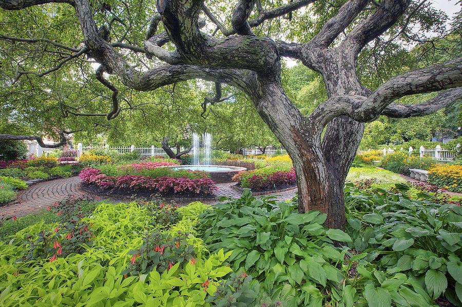 Prescott Park Photograph - Prescott Garden by Eric Gendron