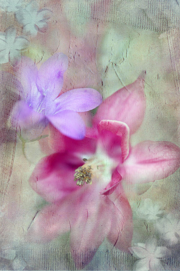 Floral Photograph - Pretty Flowers by Annie Snel