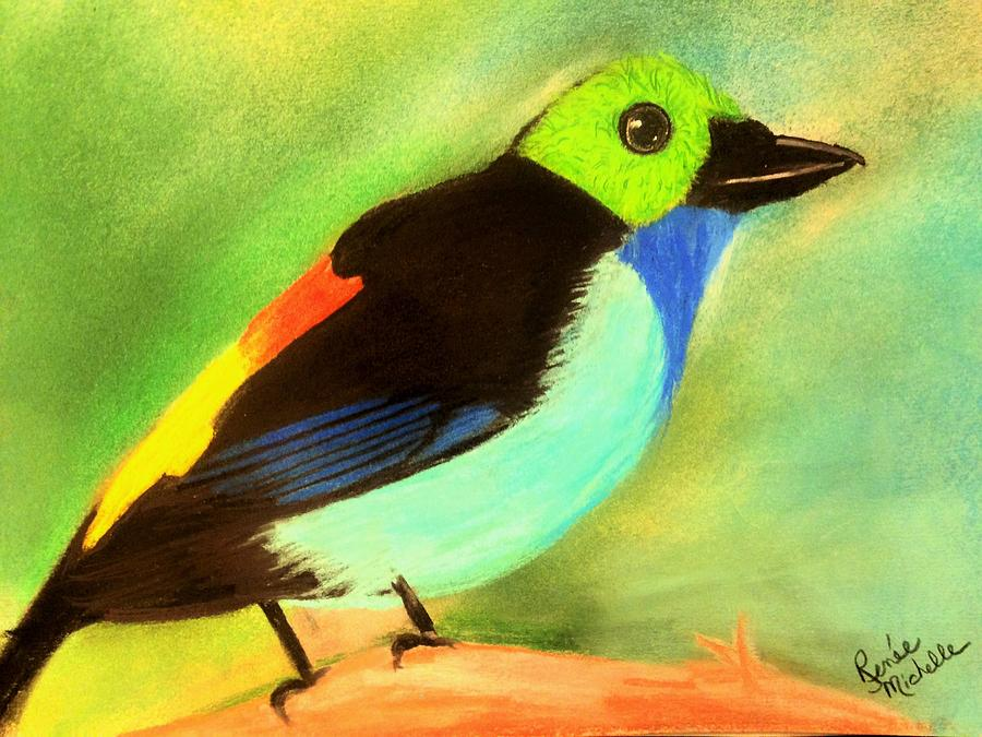 Bird Pastel - Pretty Paradise Tanager by Renee Michelle Wenker