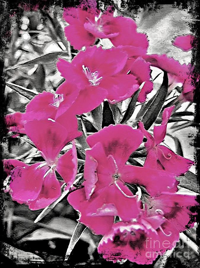 Pretty pink flowers digital art by miss dawn canadian art work digital art pretty pink flowers by miss dawn mightylinksfo