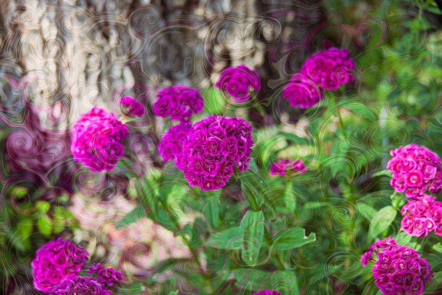 Pretty Pink Petals by Omaste Witkowski