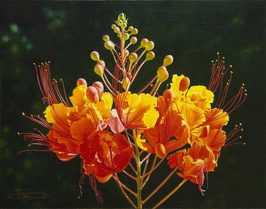 Pride Of Barbados Painting By Gary Hernandez