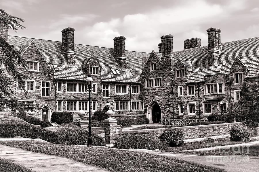 Princeton University Photograph - Princeton University by Olivier Le Queinec