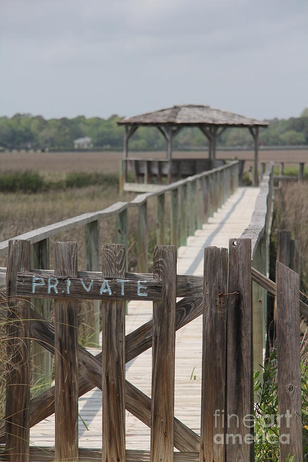 Private Boat Dock by Diane Greco-Lesser