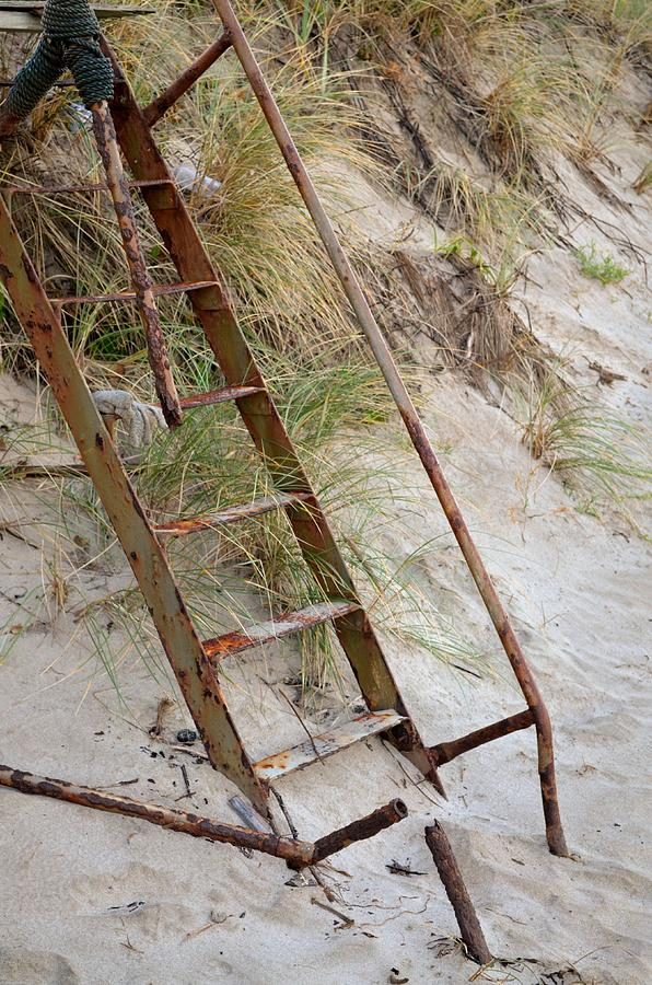 Ladder Photograph - Proceed With Caution by Laureen Murtha Menzl