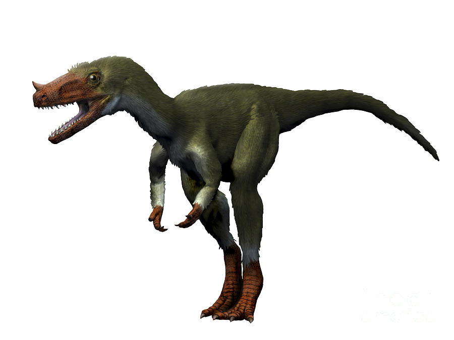Dinosaur Digital Art - Proceratosaurus Dinosaur by Nobumichi Tamura