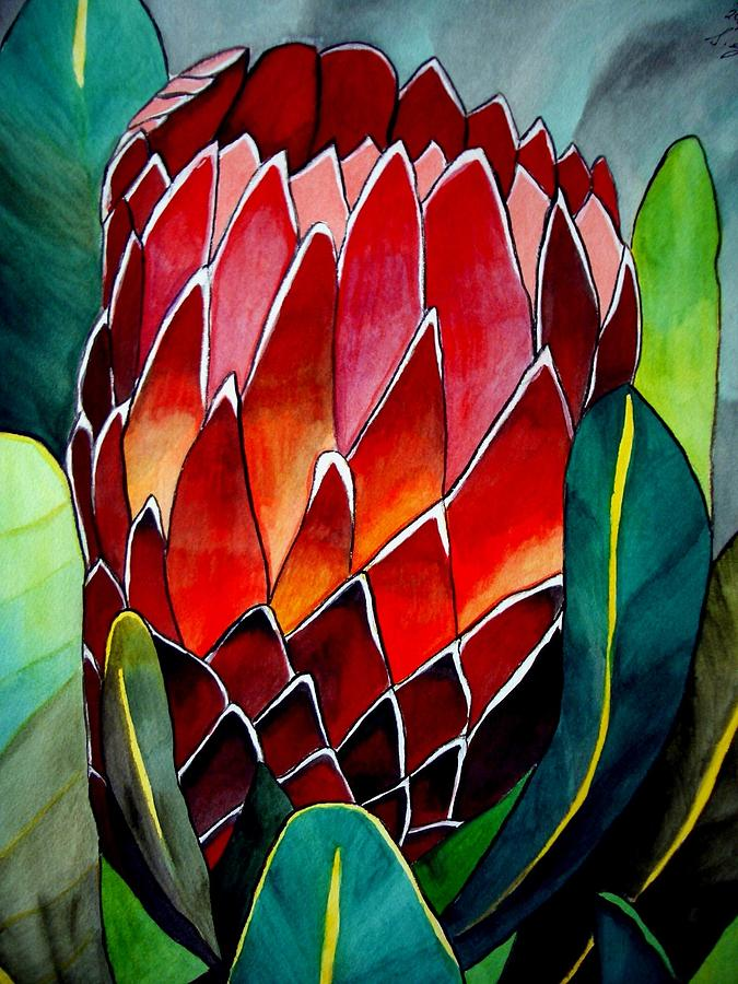 Protea Painting - Protea by Sacha Grossel