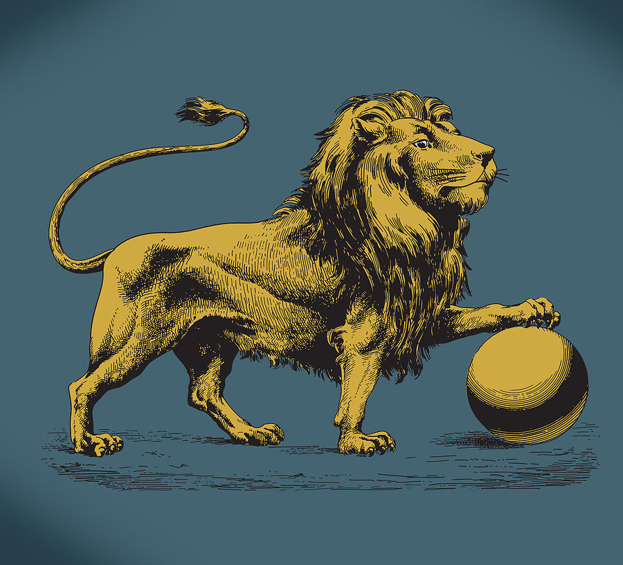 Wildlife Digital Art - Proud Lion by Viv Griffiths