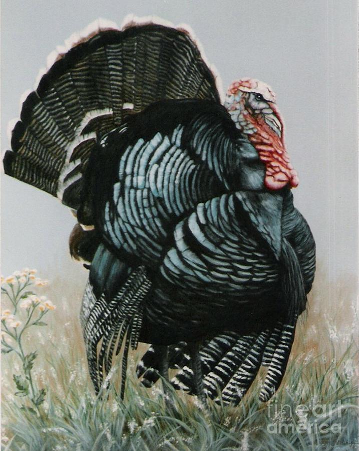 Turkey Acrylic Painting
