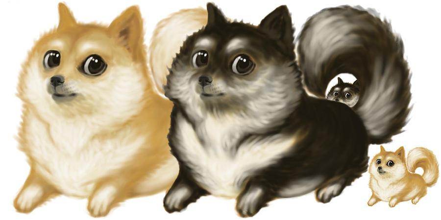 Animal Digital Art - Proud Pomeranian Parents by Mark Hom