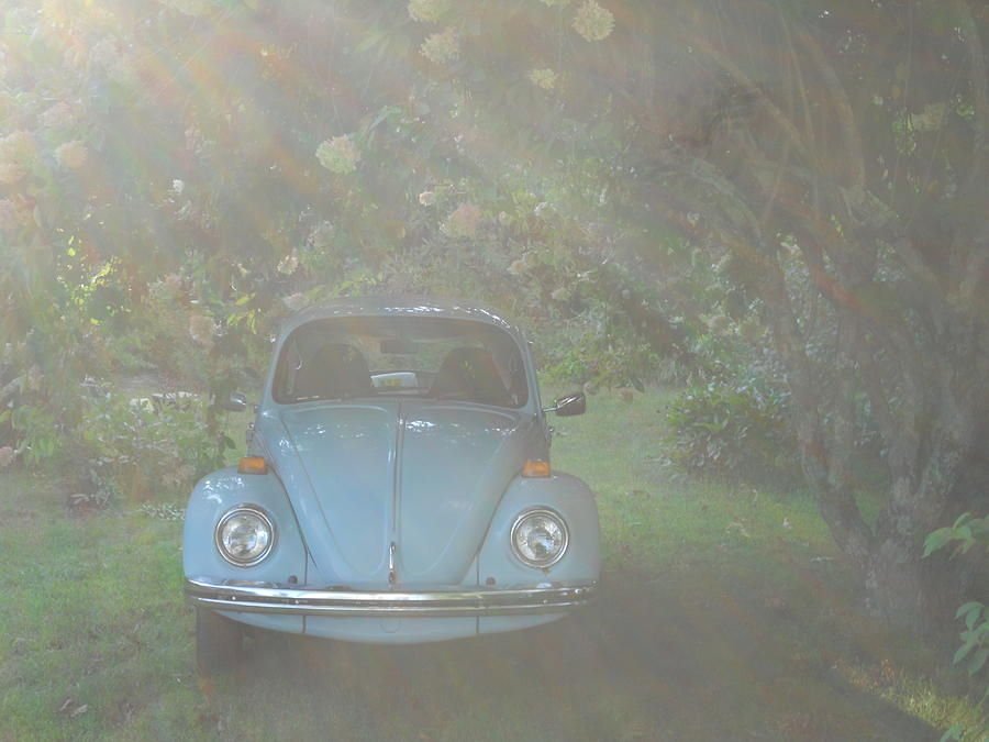 Car Photograph - Psychedelic Bug by Diannah Lynch