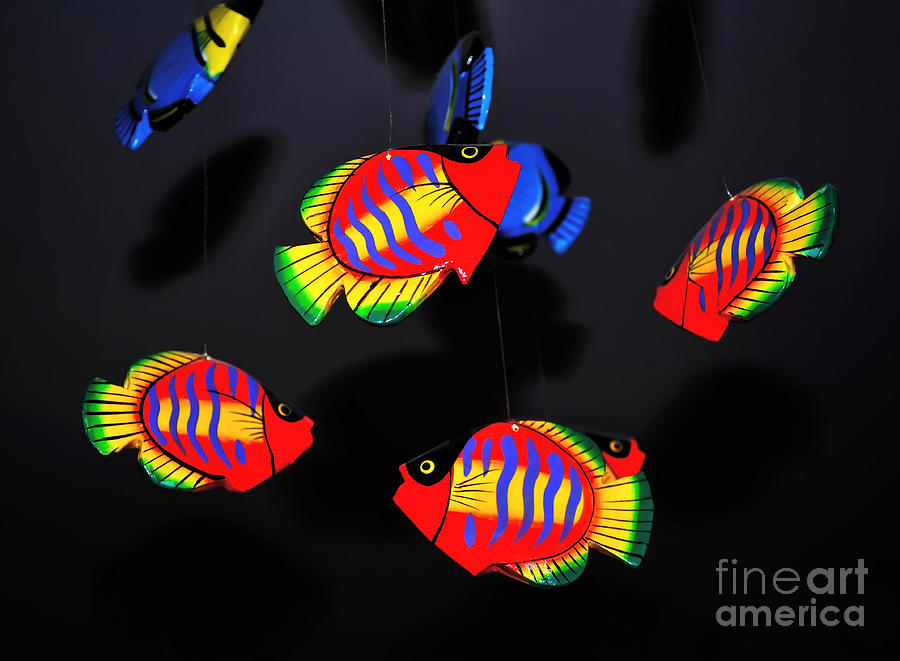 Fish Photograph - Psychedelic Flying Fish by Kaye Menner