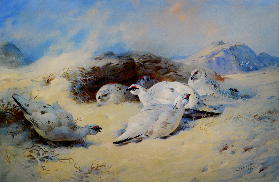 Ptarmigan Seeking Shelter Painting