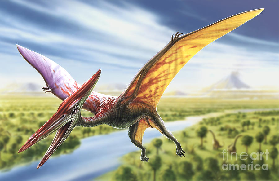 Adrian Chesterman Digital Art - Pterodactyl by Adrian Chesterman
