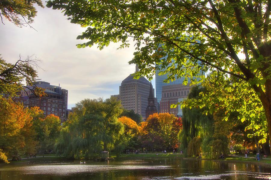 Boston Photograph - Public Garden Skyline by Joann Vitali