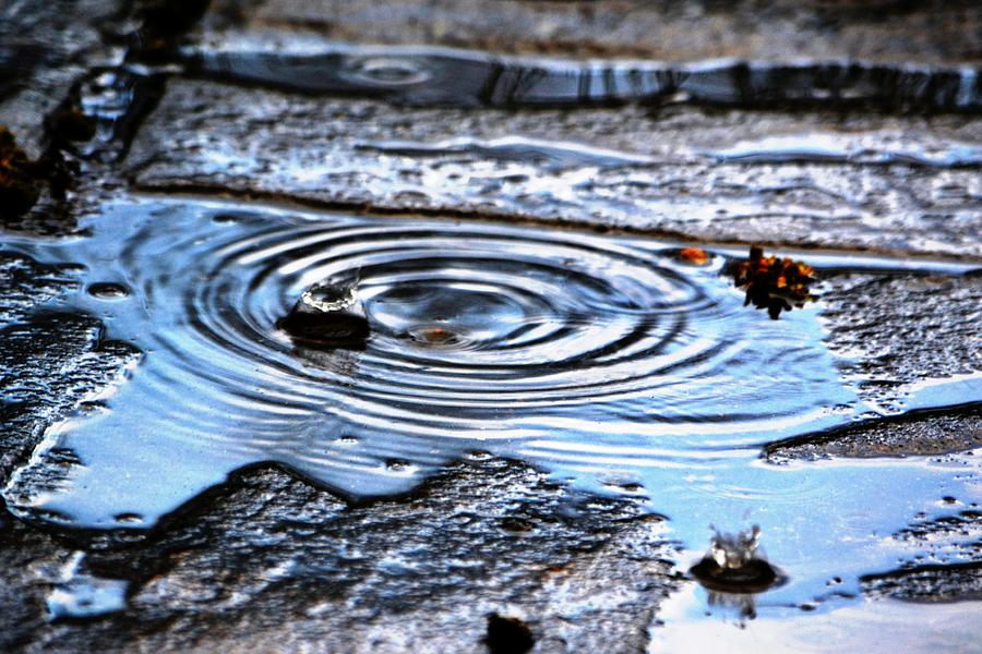 Puddle Photograph - Puddle Water Droplet by Aqil Jannaty