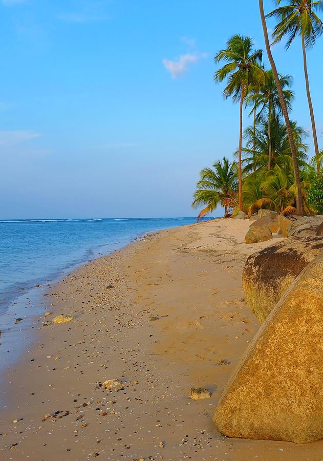 Caribbean Photograph - Puerto Rico Beach by Stephen Anderson