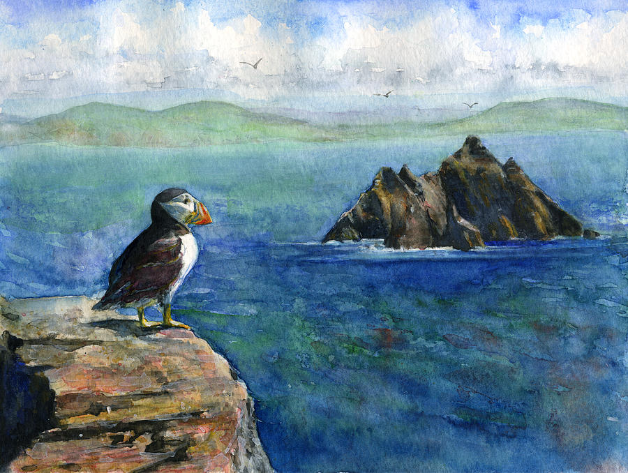 Puffin Painting - Puffin At Skellig Island Ireland by John D Benson