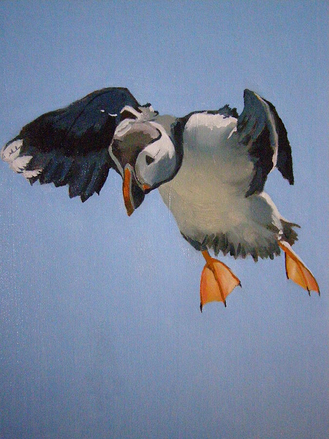 Wildlife Painting - Puffin Landing by Eric Burgess-Ray