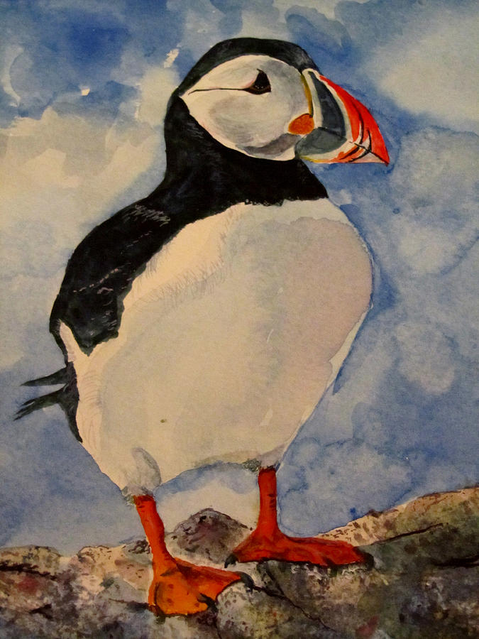 Puffin Painting By Louise Grant