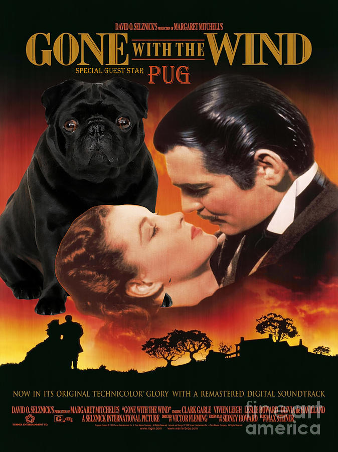 Pug Art Gone With The Wind Movie Poster Painting By
