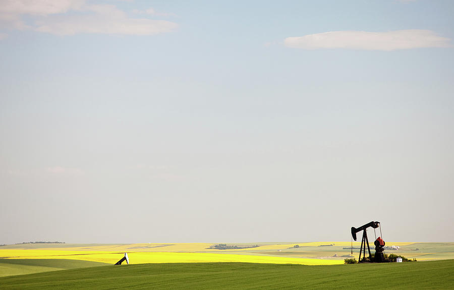 Pumpjack In Canola Field In Rural Photograph by Imaginegolf