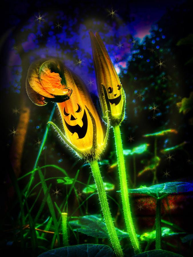 Pumpkin Digital Art - Pumpkin Flowers by Alessandro Della Pietra