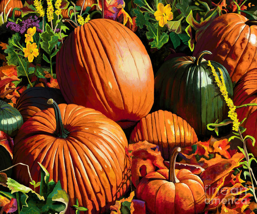 Fall Pumpkin Patch by Jackie Case