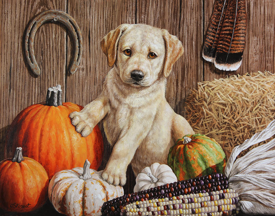 Puppy Painting - Pumpkin Puppy by Crista Forest