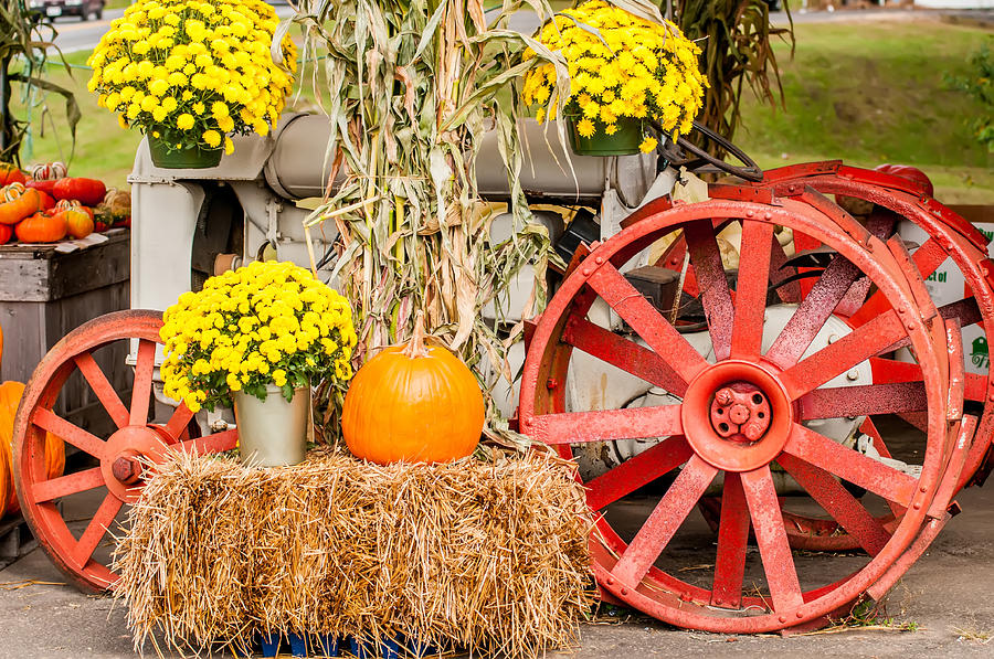 Pumpkins Next To An Old Farm Tractor Photograph